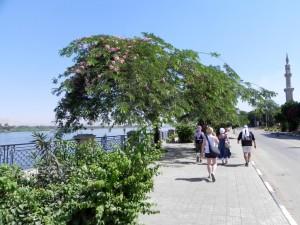 LUXOR Nijlboulevard, een wandeling